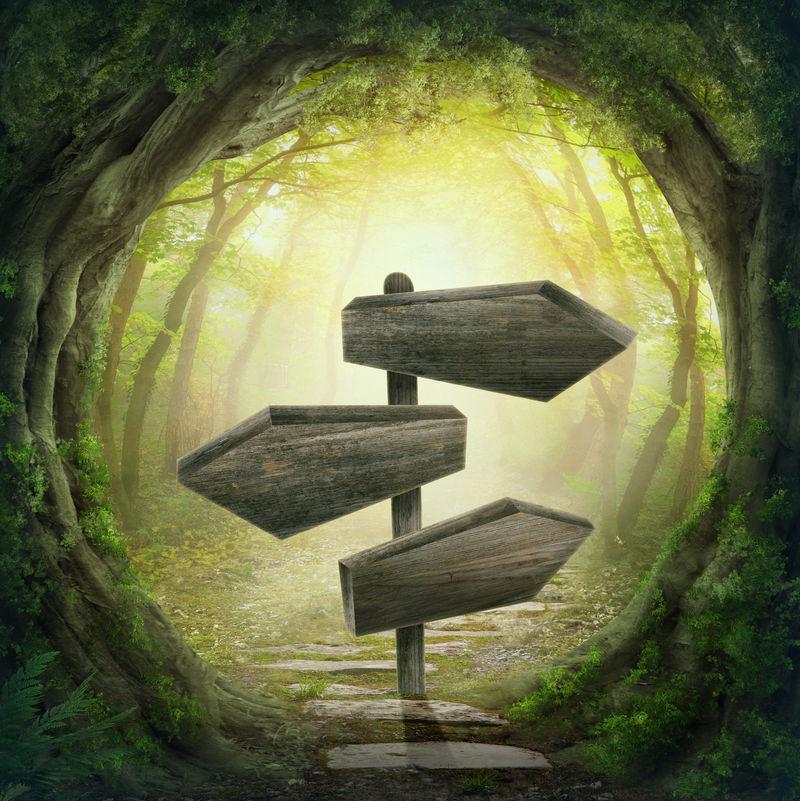 神奇的黑暗森林中的木箭路标