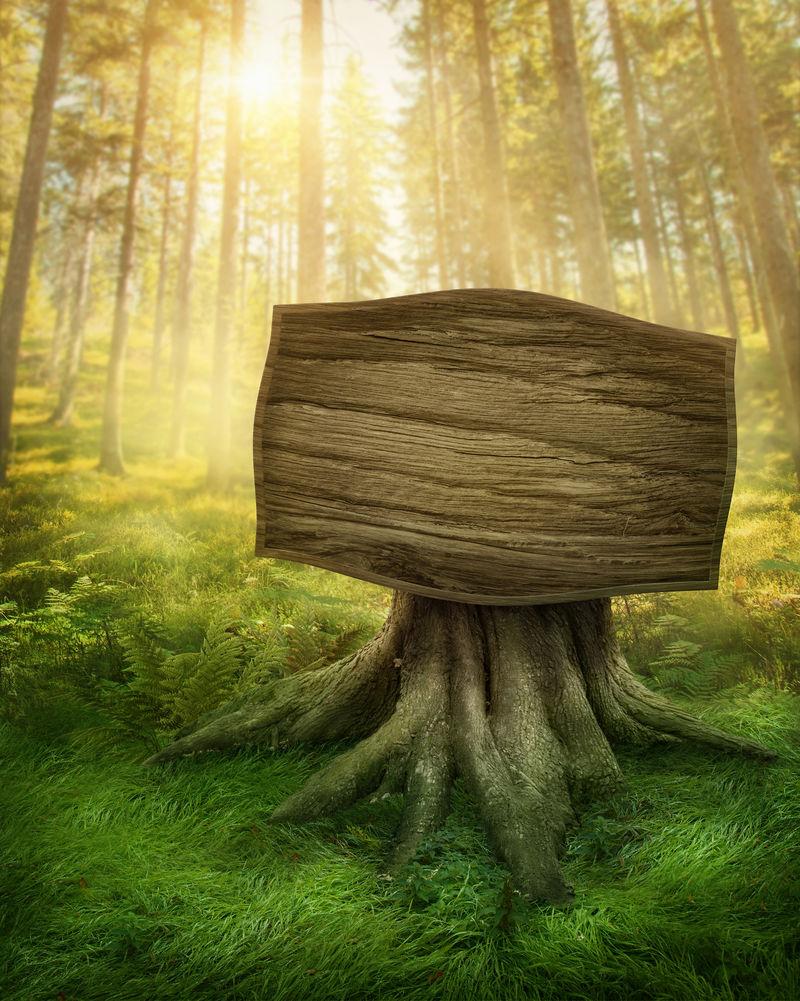 魔法黑暗森林中的木制标志