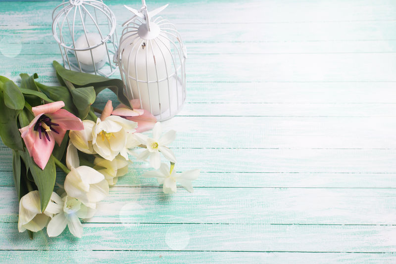 清新的春天白粉色郁金香和水仙花-装饰性的鸟笼中的蜡烛在一缕光线下衬着青绿色的木背景-选择性聚焦-放置文本