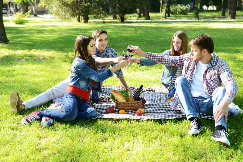 公园野餐愉快的朋友