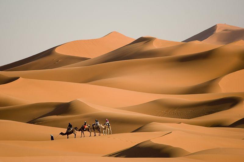 摩洛哥骆驼旅行