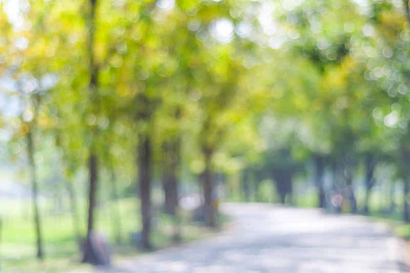 博基灯光模糊公园-自然背景