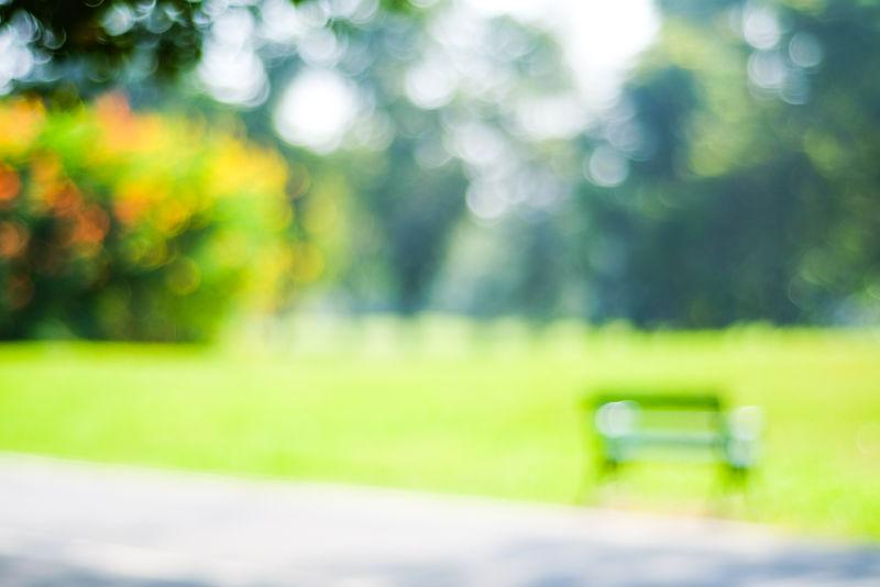 模糊绿色公园、花园室外背景、博基灯光背景下的模糊树木自然、春夏模糊自然公园