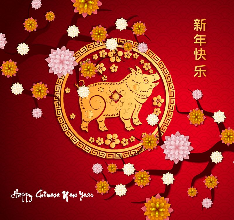 中国猪年2019快乐-农历新年