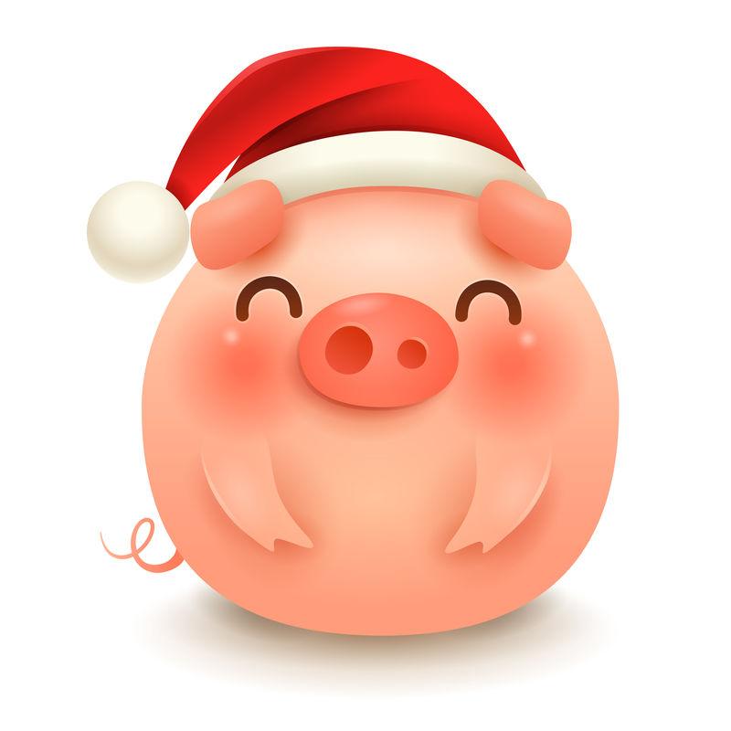 带圣诞老人红帽子的肥猪-新年快乐