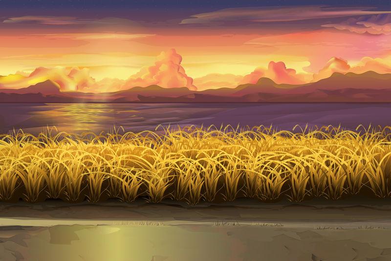 日落、田野、矢量景观