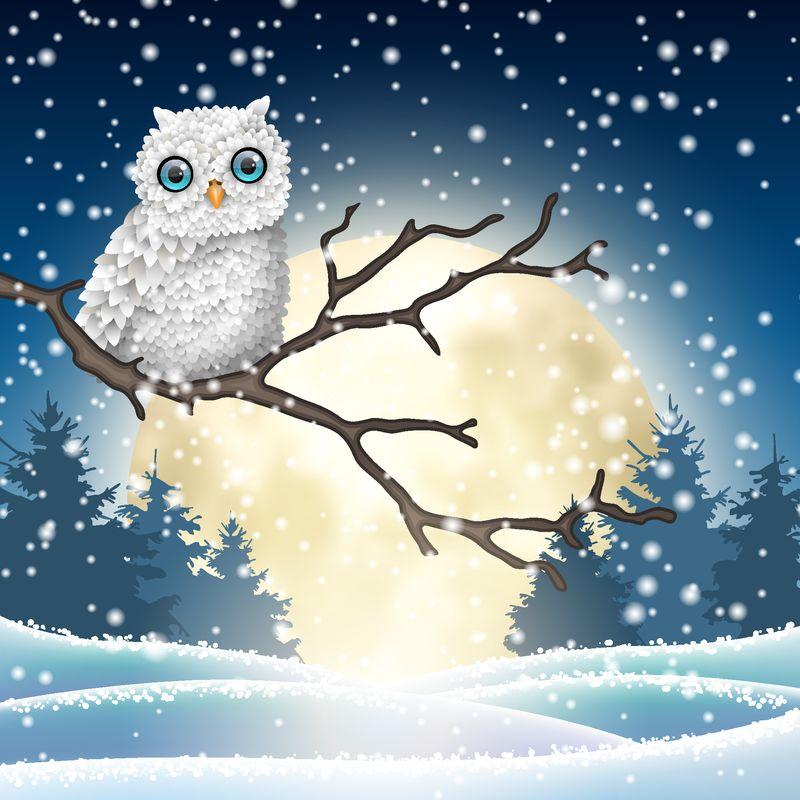 圣诞动机-可爱的白色猫头鹰坐在冬夜的干燥树枝上-在明亮的大月亮前-矢量图-透明度和渐变网格的EPS 10