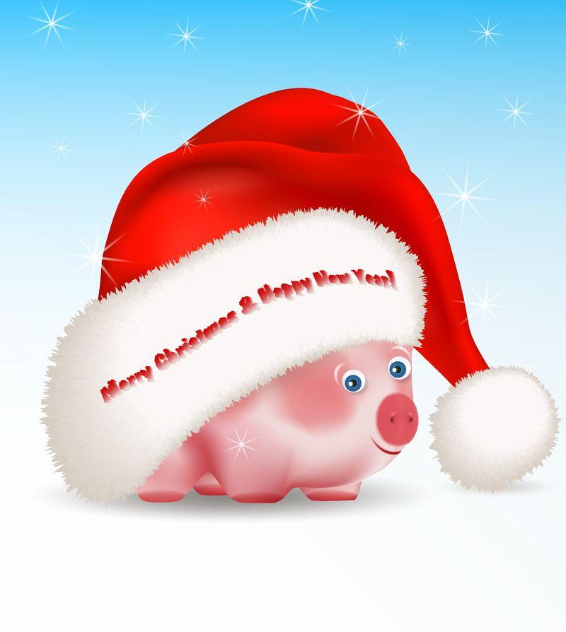 小可爱的小猪-一个中国新年的象征-从大圣诞老人的帽子下向外窥视-用蓝色背景和星星问候圣诞快乐和新年快乐-矢量图