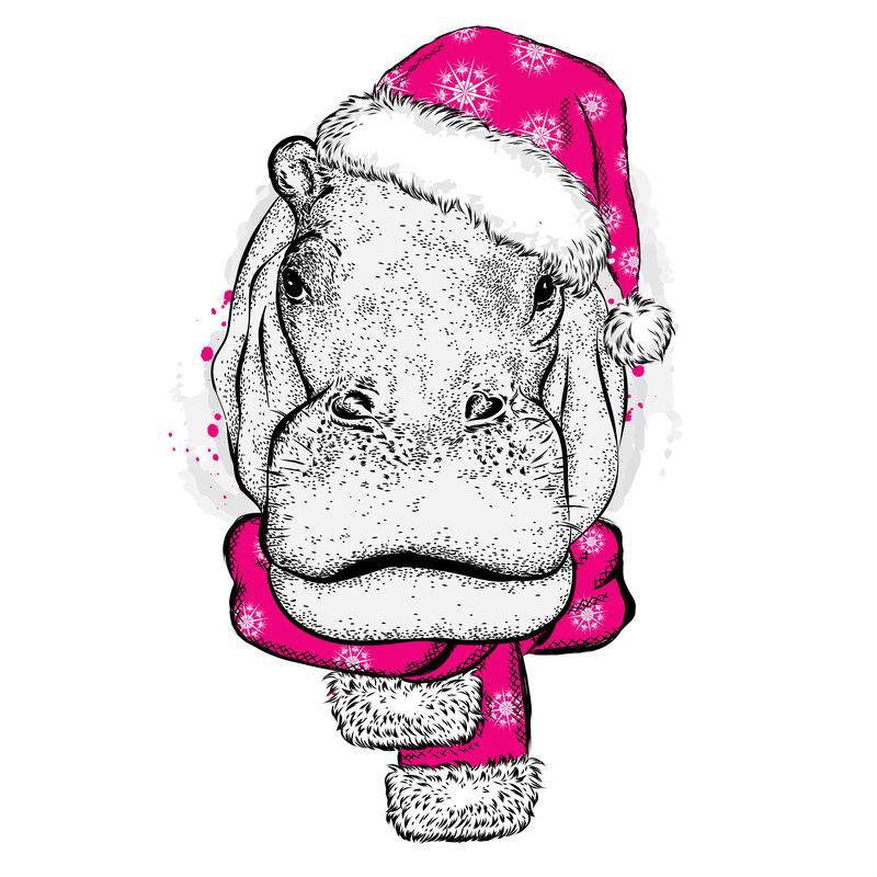 头戴圣诞帽的河马-卡片或海报的矢量图-印在衣服上-新年和圣诞节