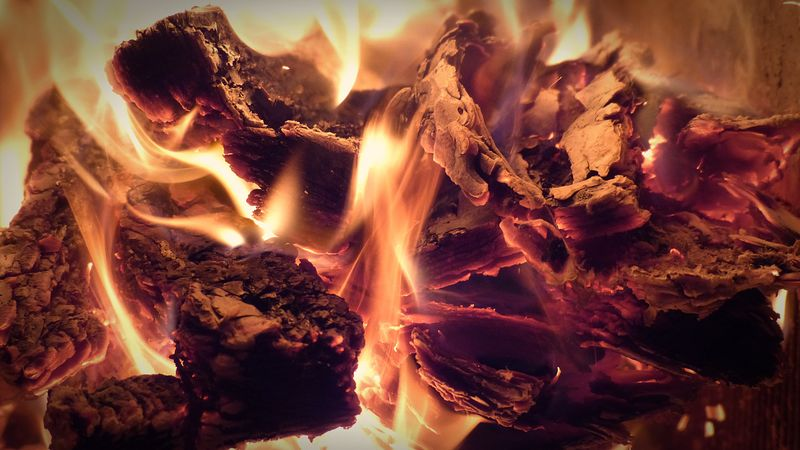 壁炉里的热火