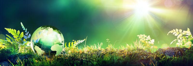 绿色地球-苔藓-环境概念