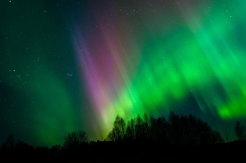 爱沙尼亚天空北极光的美丽照片