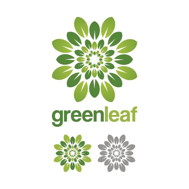 绿叶环手绘矢量插图-带有样品公司名称的标志设计模板