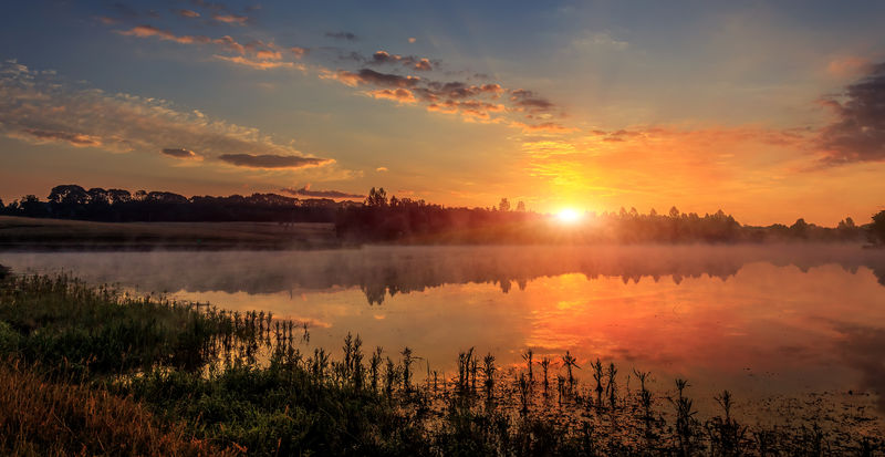 美丽的自然背景。美丽的雾景。亚马逊