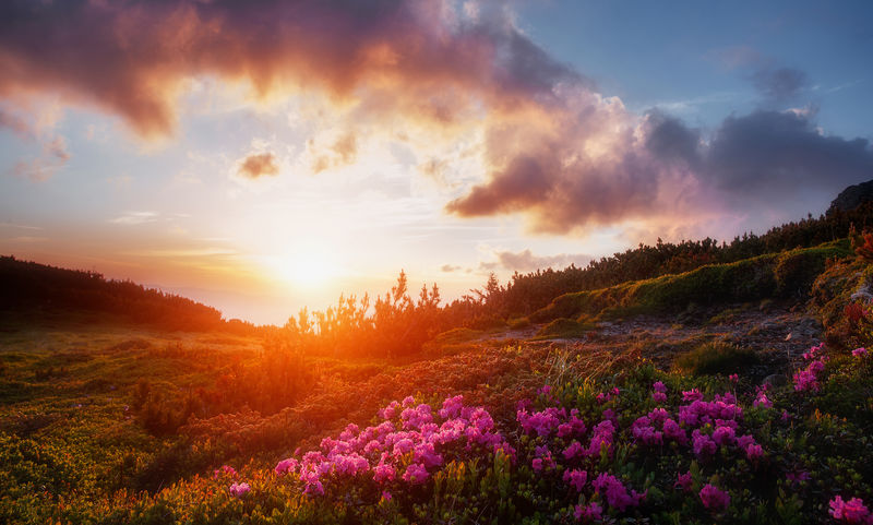 令人敬畏的高山山谷在温暖的夕阳下。
