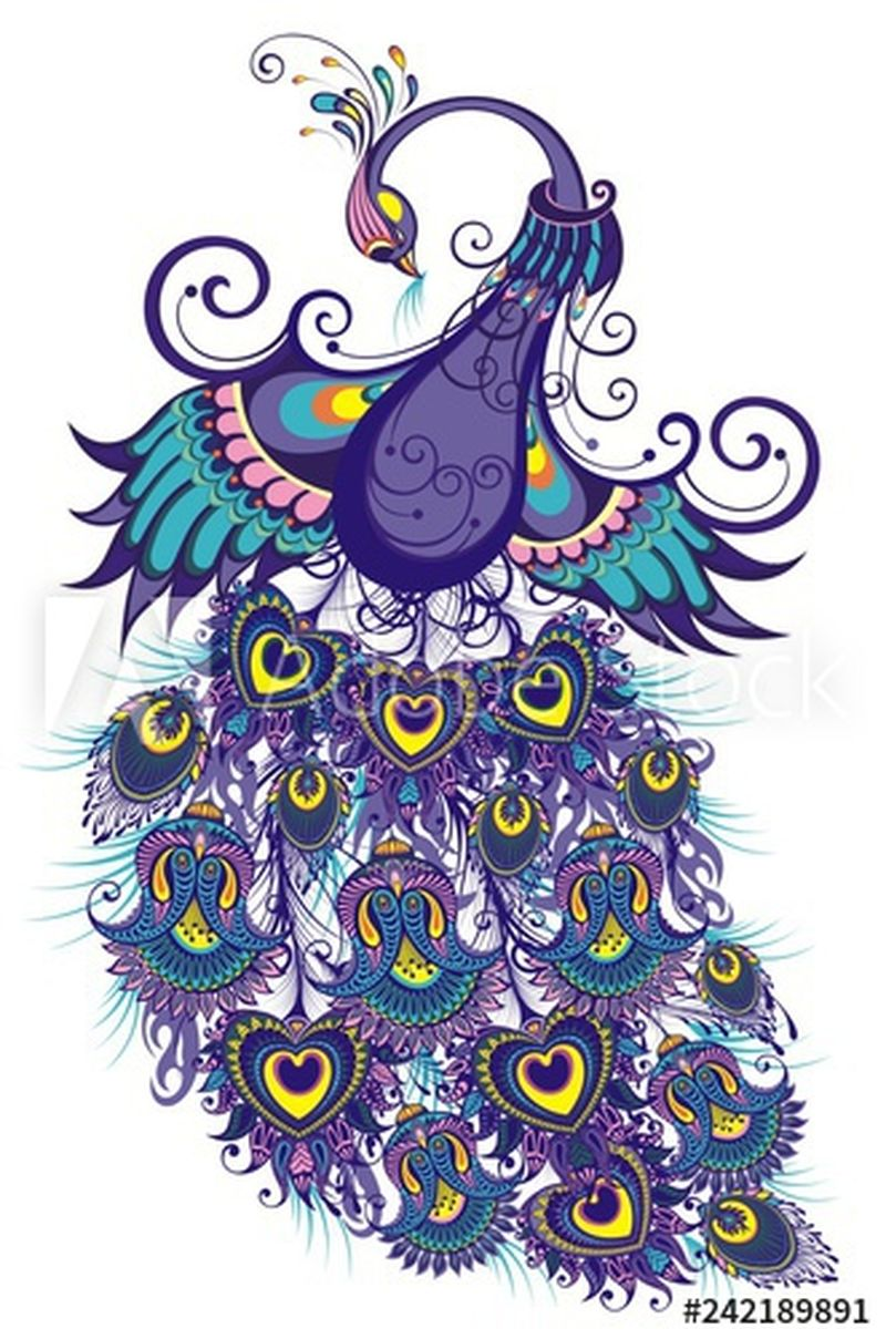 可爱的小鸟-梦幻孔雀