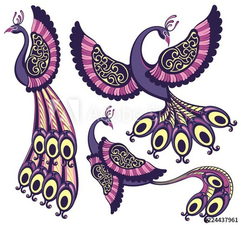 孔雀-奇幻鸟