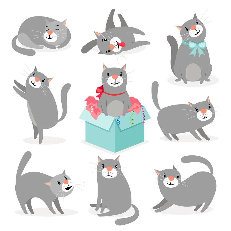 灰色可爱猫收集载体