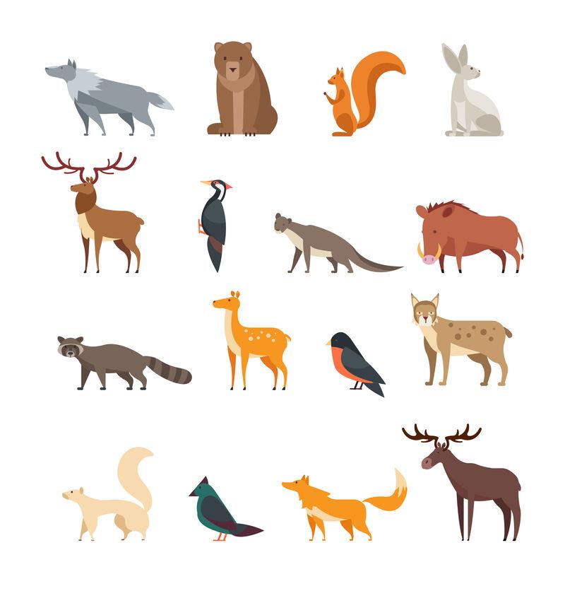 森林野生动物和鸟类卡通集孤立矢量