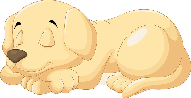 可爱的小狗睡觉