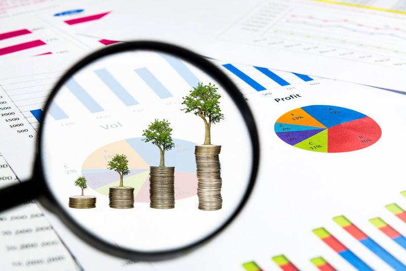 放大镜看到树木生长在硬币上-上面有财务图表文件-投资理念
