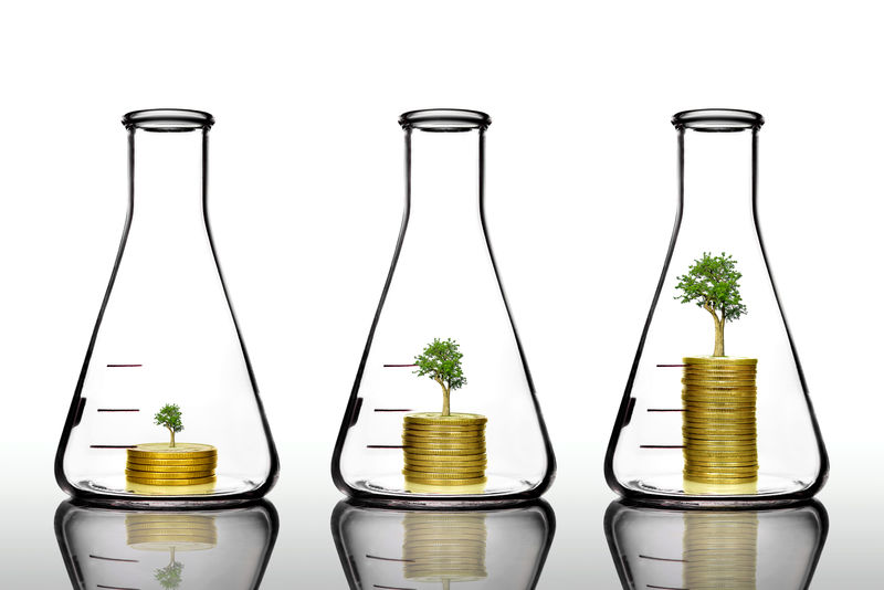 金瓶树木-钱与投资增长观