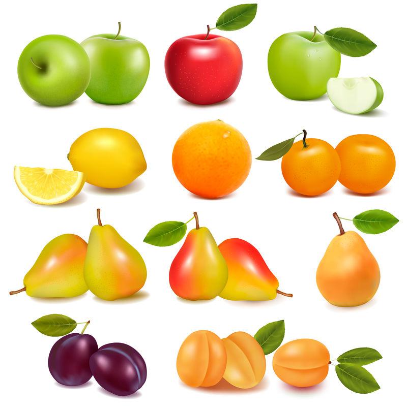 一大群不同的新鲜水果-矢量
