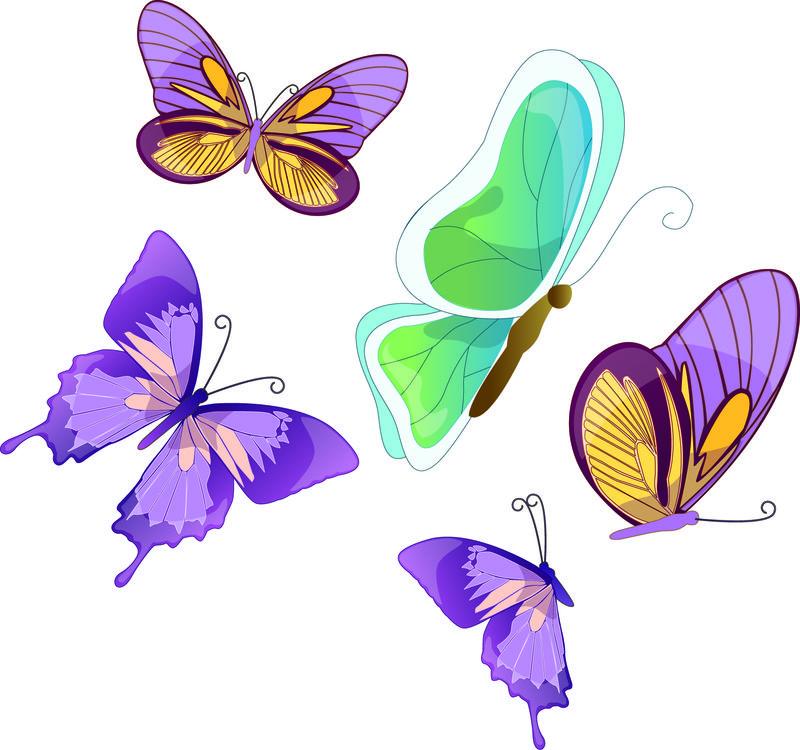 美丽的蓝色蝴蝶-孤立在白色
