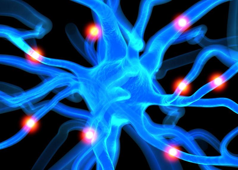 神经疾病概念