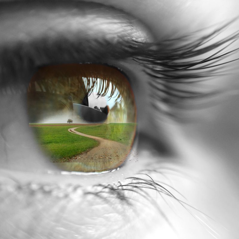 眼睛的特写镜头