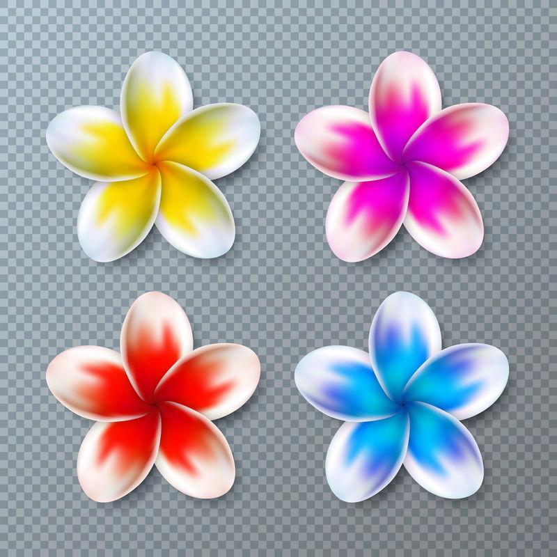 矢量插图与彩色鸡蛋花收集孤立在透明背景。矢量假日设计元素元素与夏威夷热带花卉集旗帜,传单,邀请,宣传册,党海报或贺卡。