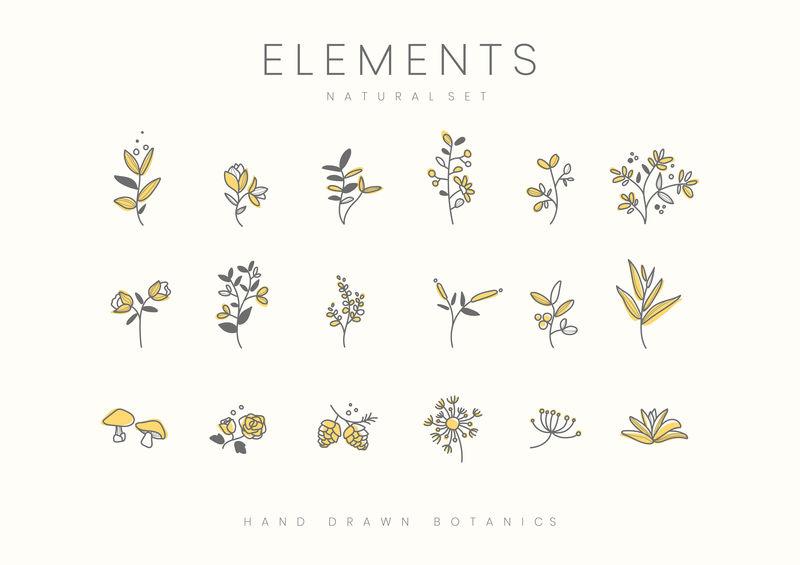 植物元素手绘集