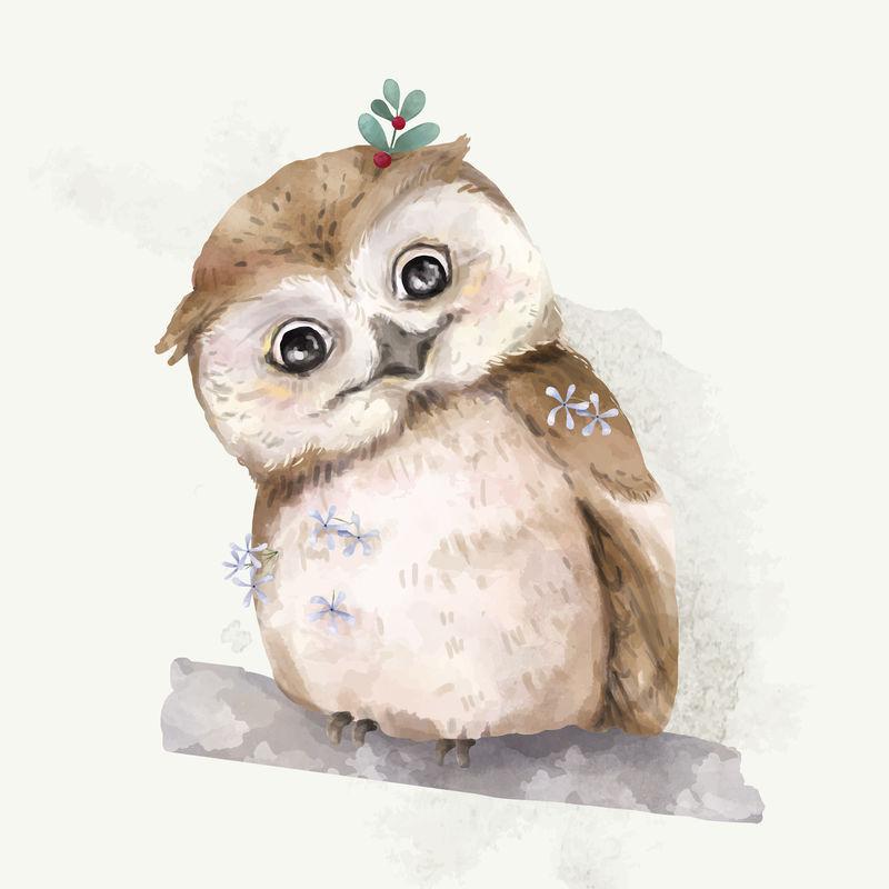 猫头鹰宝宝的插图