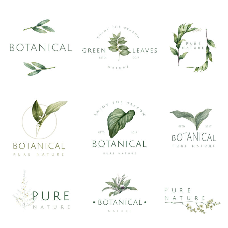 自然和植物标志向量集