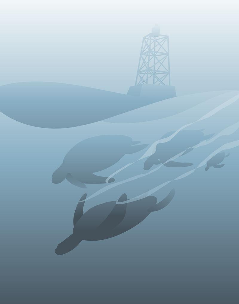水下海洋生物图解