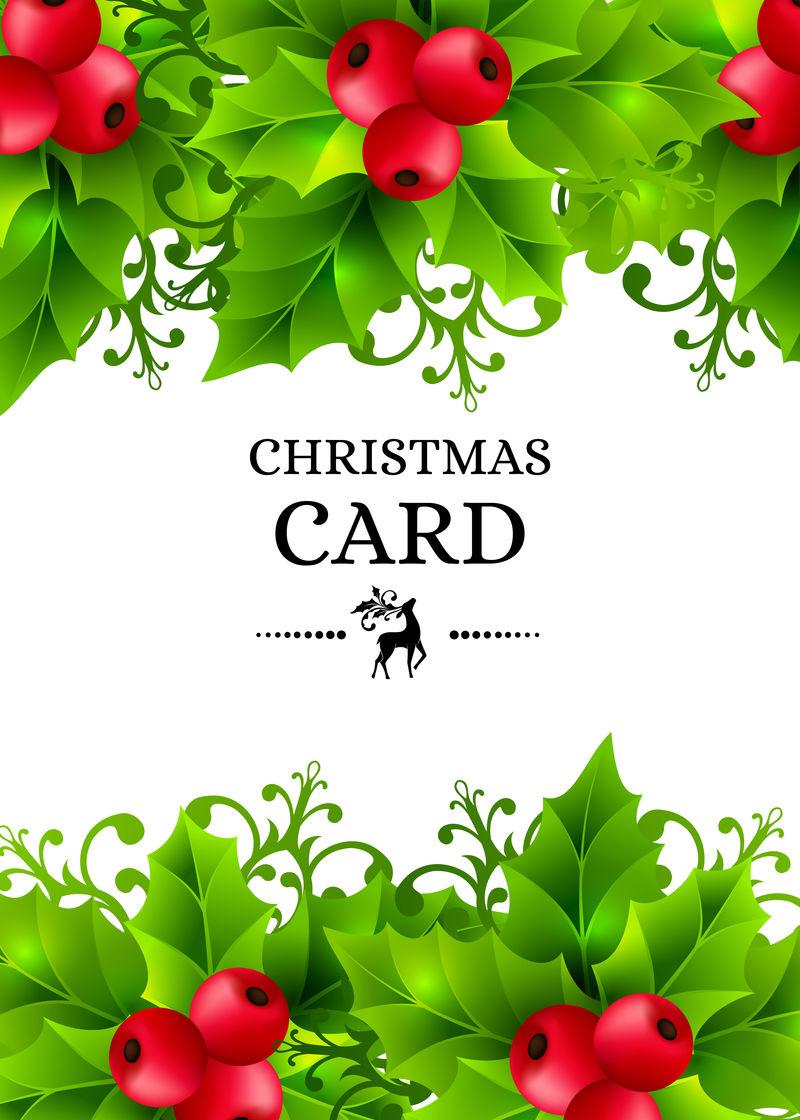圣诞背景与冬青叶装饰