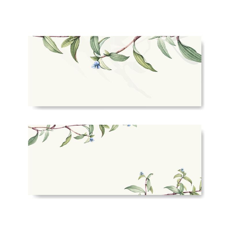 绿色植物叶子背景设计