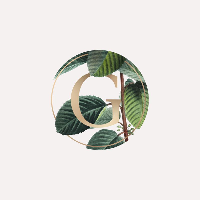 带有字母G矢量的植物徽章