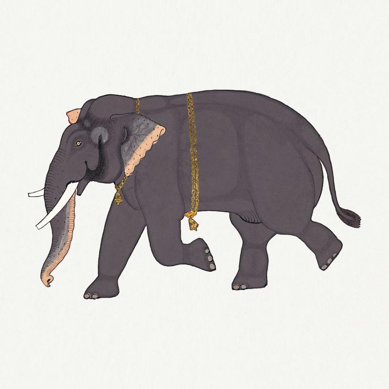 手绘不透明水彩大象设计元素
