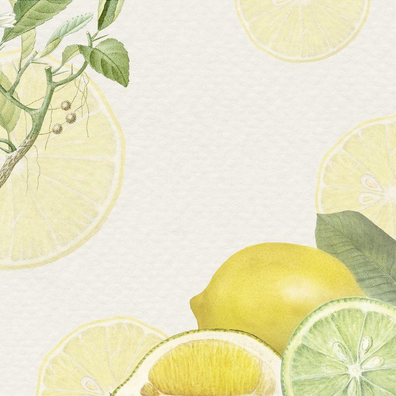 手绘天然新鲜柠檬图案框架
