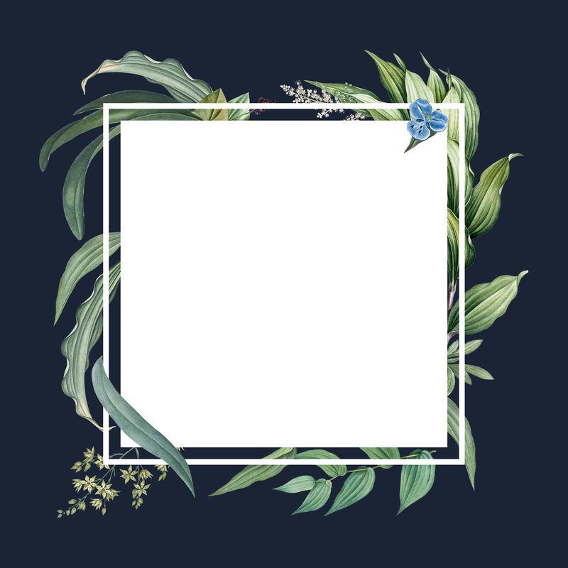 绿叶空框设计