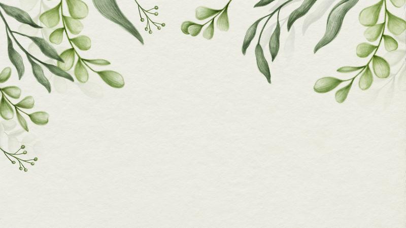 绿色框架插图