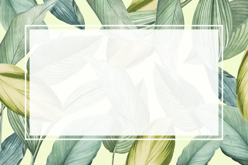 空白矩形热带叶框模板向量