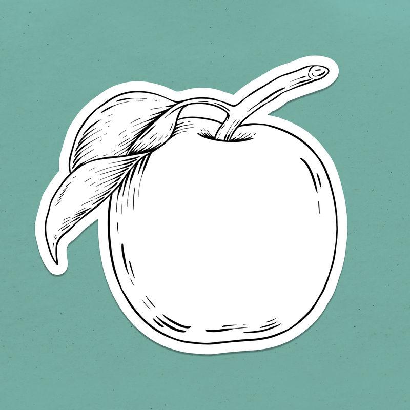 苹果轮廓贴纸覆盖在青绿色背景上