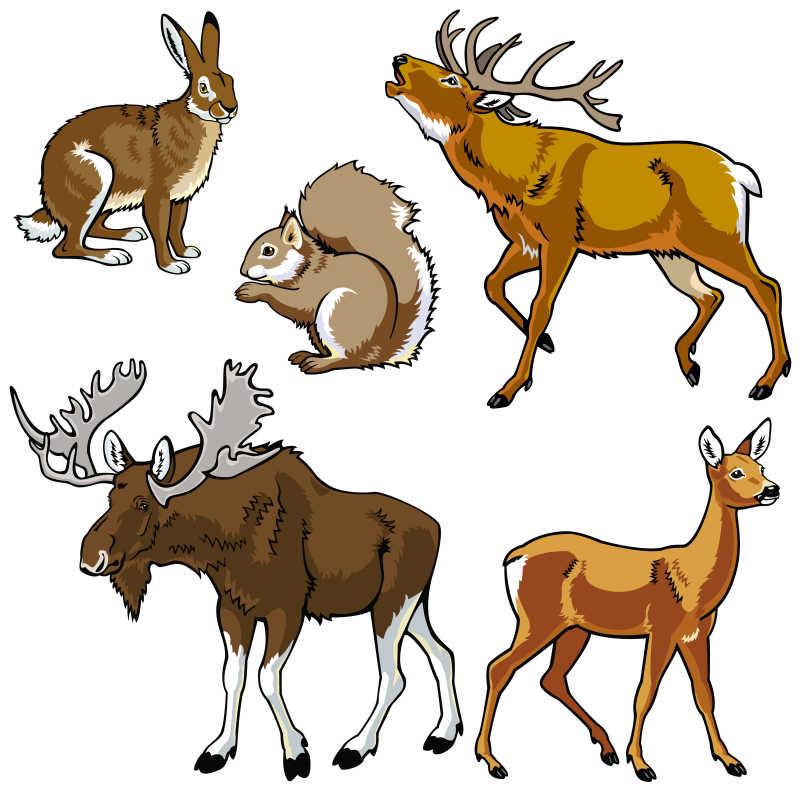 爬行动物矢量卡通插图