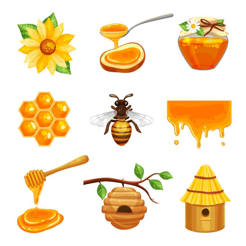 矢量的蜂蜜插画