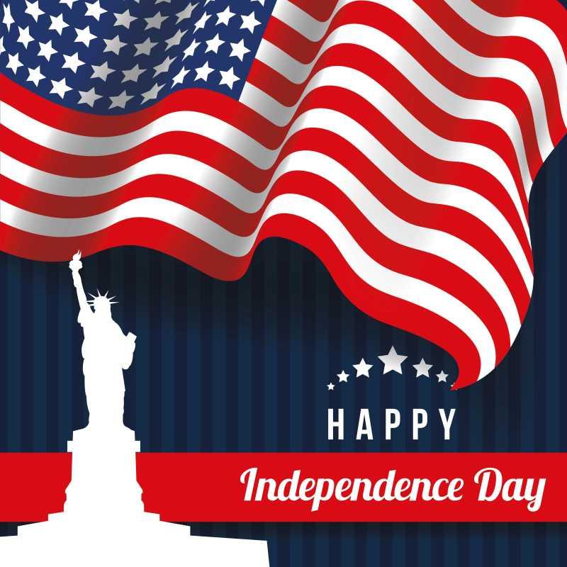 庆祝独立日的矢量海报背景