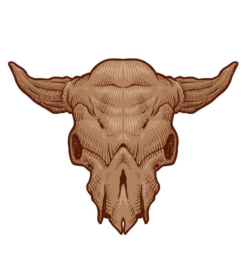 牛头骨矢量插画