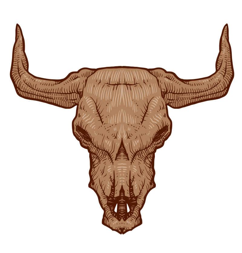 矢量动物头骨