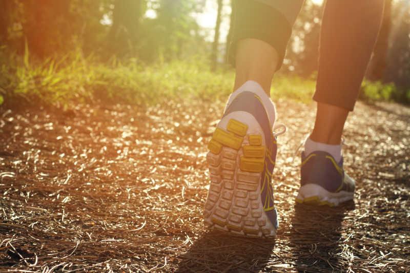 阳光下运动员走在秋季的树林里